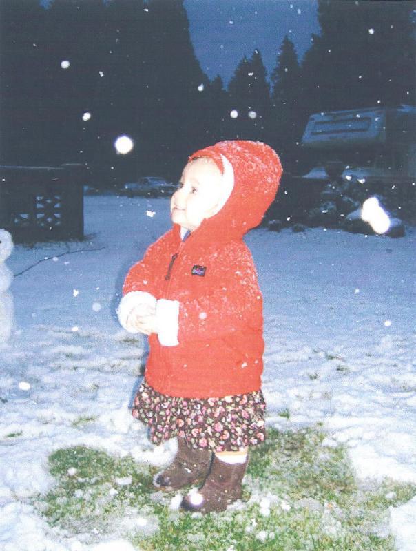 christmaschloe1